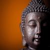 buddha-8