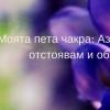33811081_1735280273235366_9122497853665574912_n